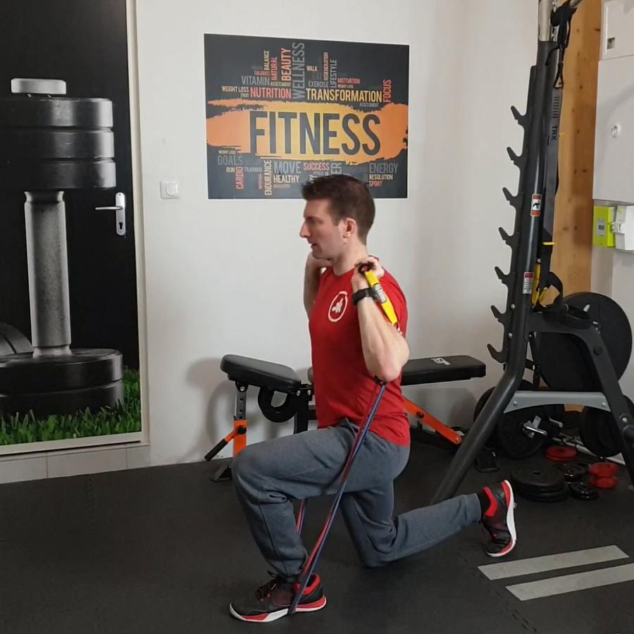 biceps avec élastiques