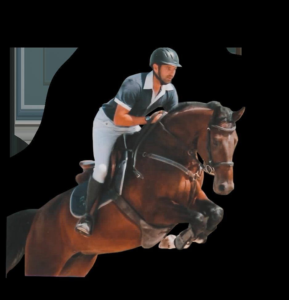 cours équitation quebec
