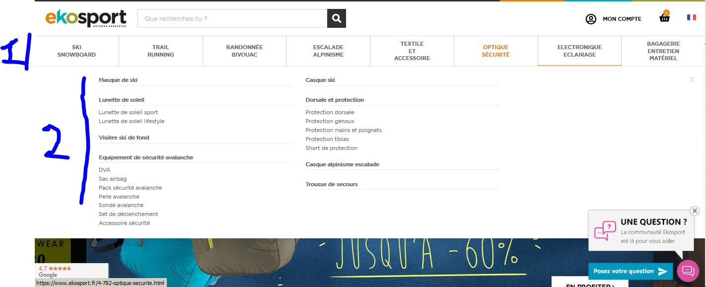 Page d'accueil d'Ekosport
