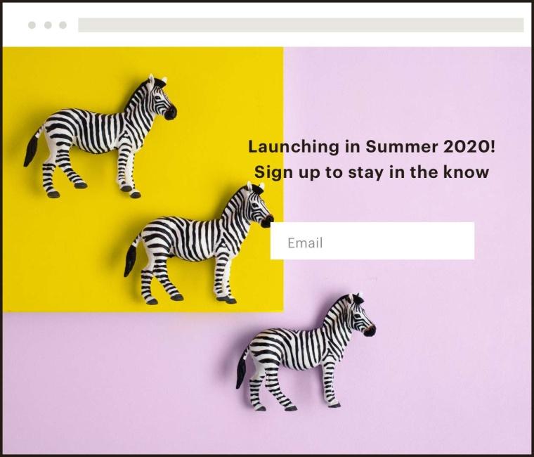 MailChimp marketing channels