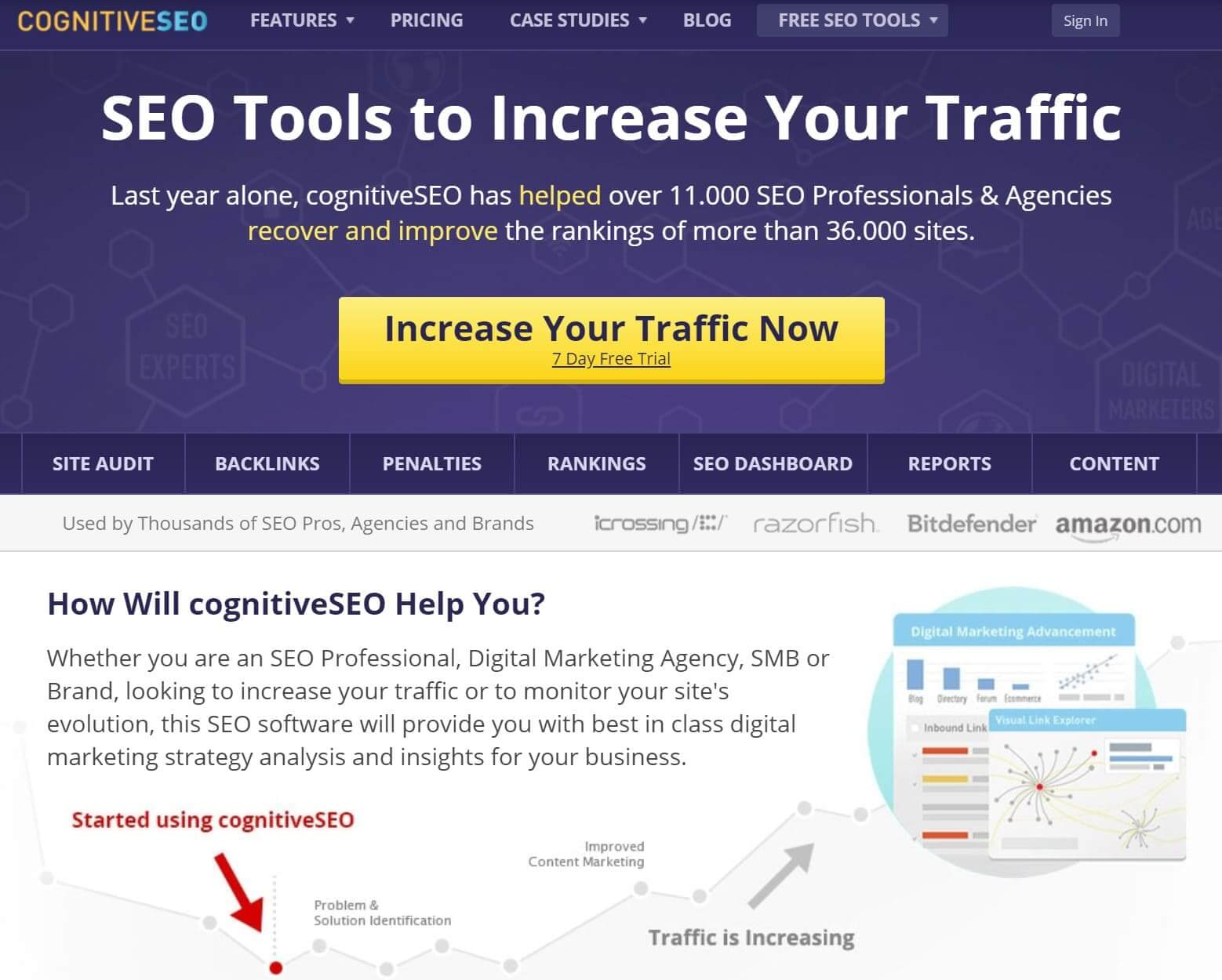 CognitiveSEO's website