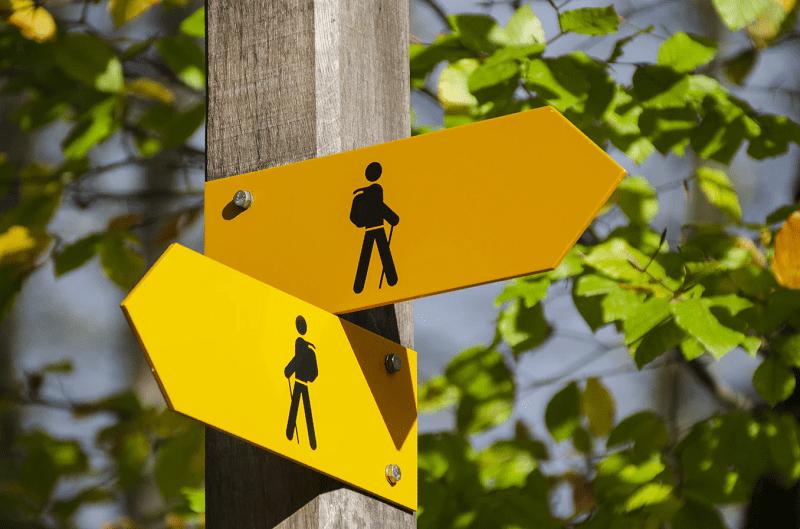 Choosing a Platform: Thinkific vs. Teachable