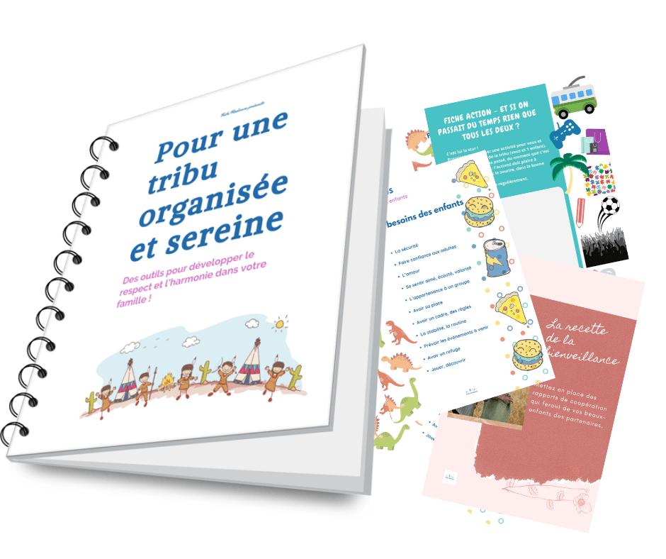 Mini-coaching gratuit ''5 petites actions vers une famille recomposée sereine''