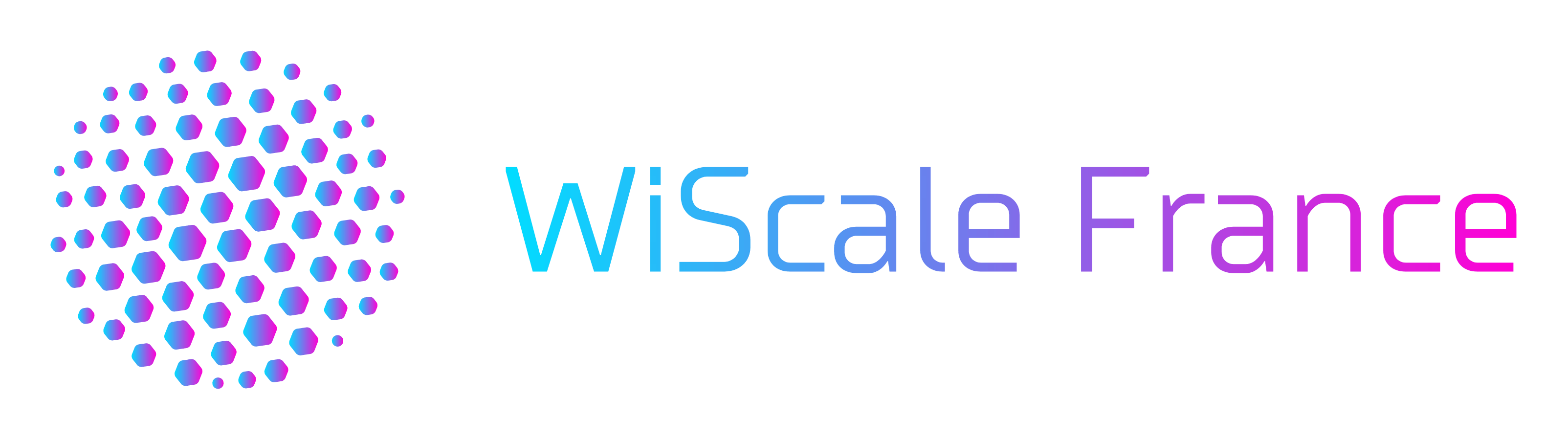 logo WiScale France