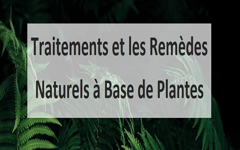 Traitements et les Remèdes Naturels à Base de Plantes