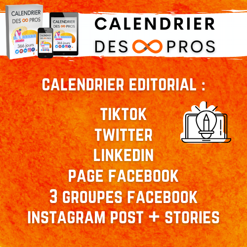 calendrier de publications des pros benedicte lagardette réseaux sociaux