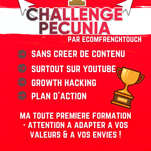 challenge pecunia formation affiliation ecomfrenchtouch benedicte lagardette