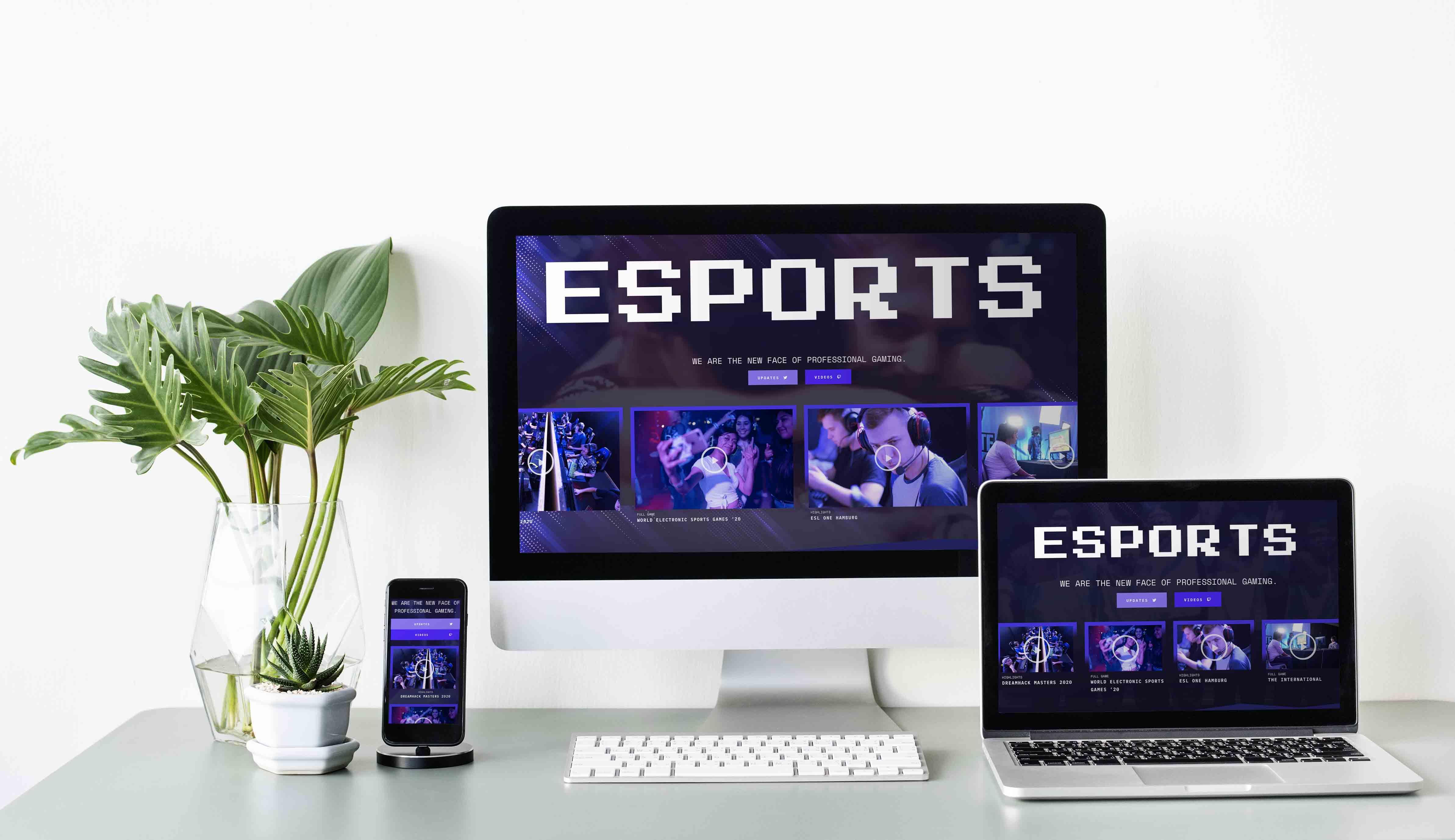 Template Wordpress + Elementor pour Team E_Sport