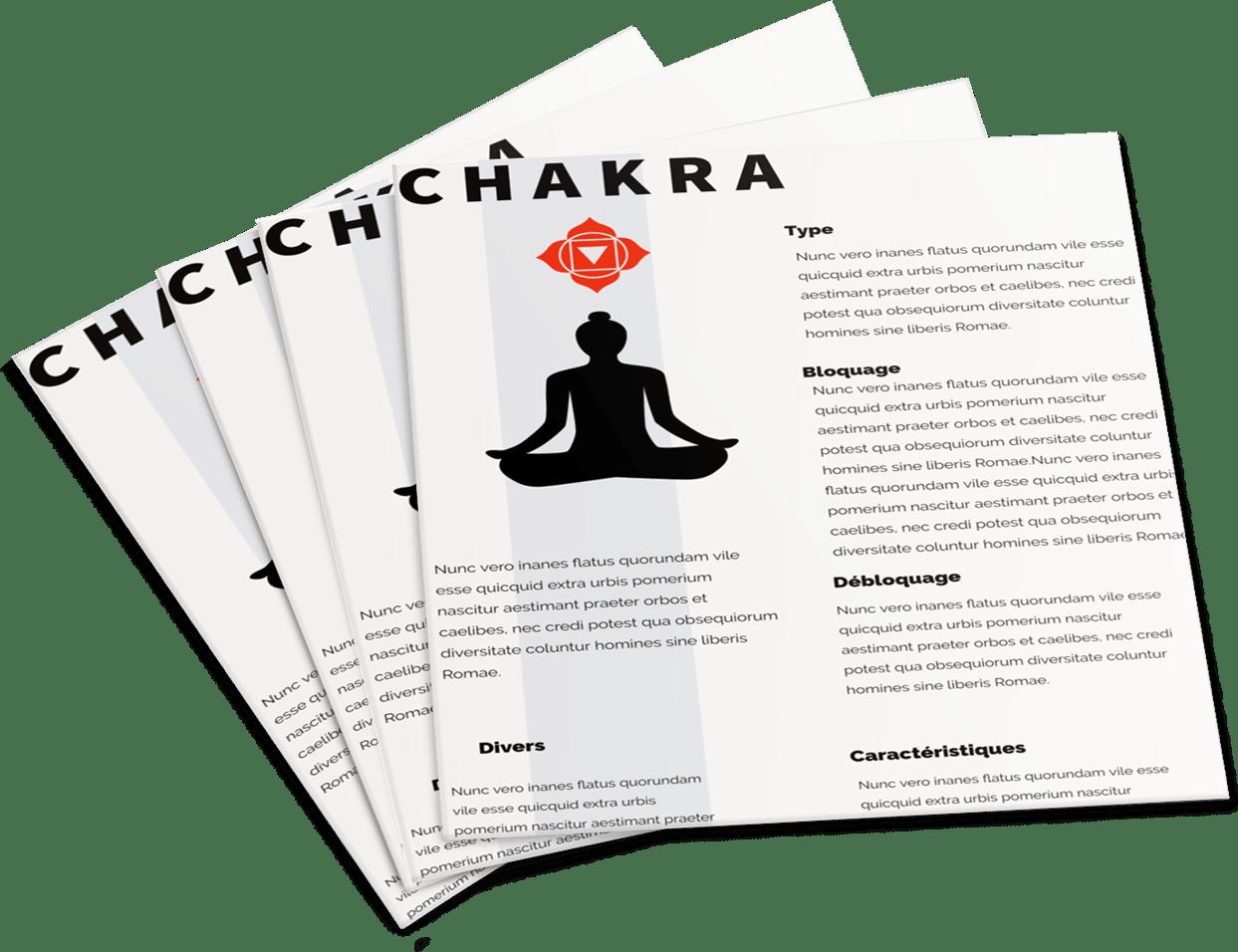 Le 1er bonus s'appelle « Les 7 Fiches Chakras »