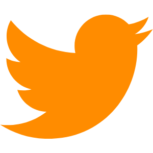 Twitter Feed for Realistic Solutions Group